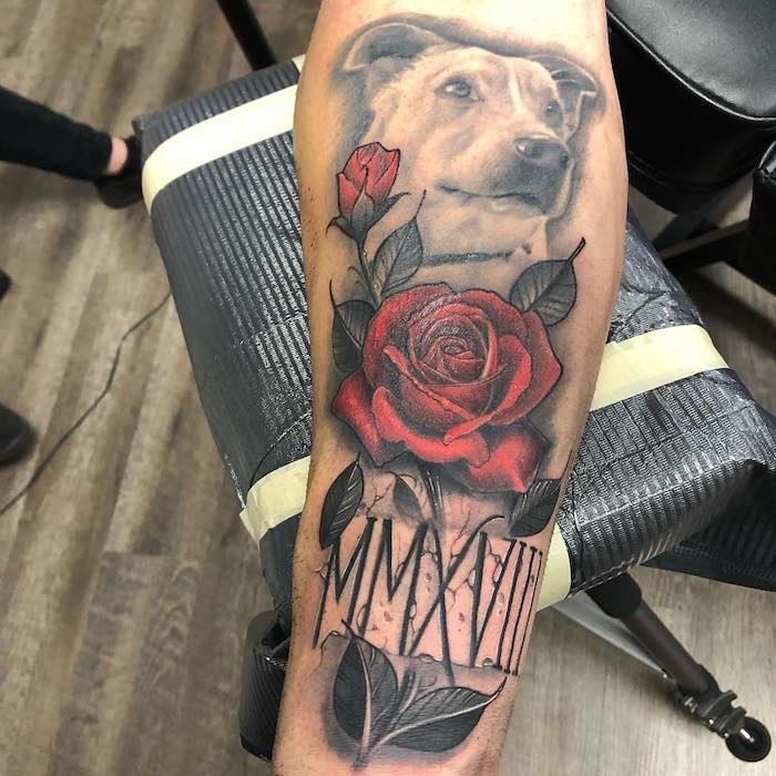 dog and roses, roman numeral tattoo ideas, black leather chair, forearm tattoo