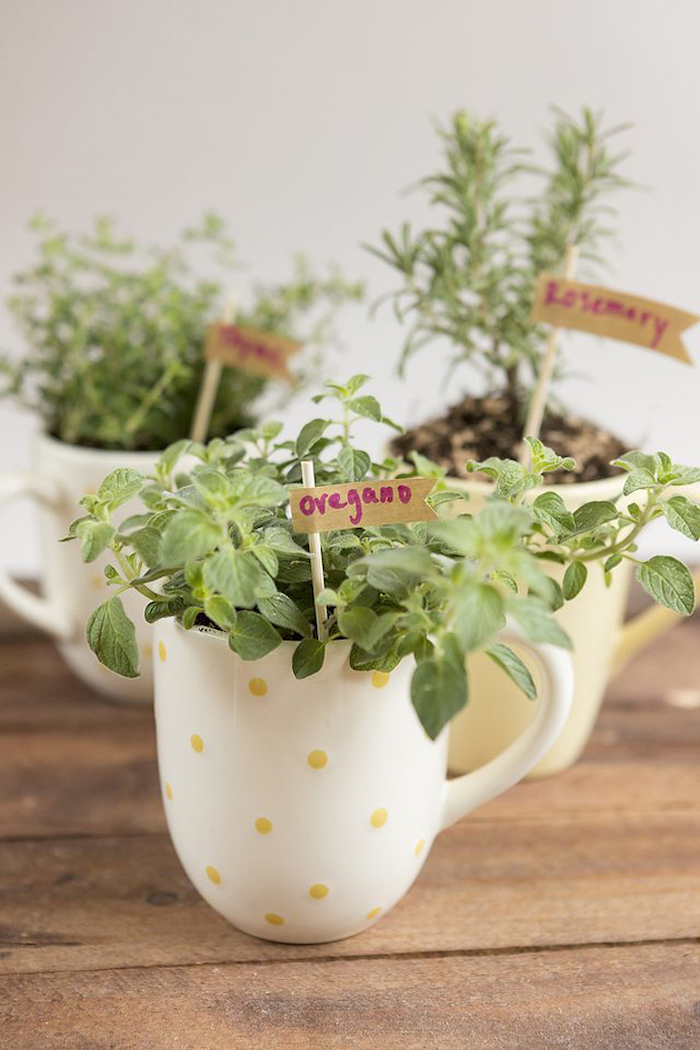 herb garden, coffee mugs, housewarming gifts, wooden table, step by step, diy tutorial