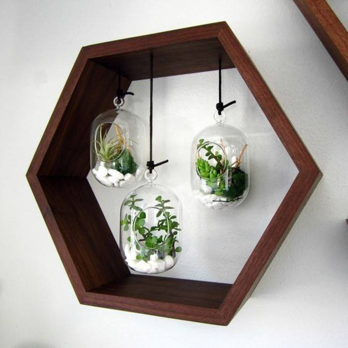 honeycomb shaped, wooden frame, three hanging glass jars, full of succulents, wall design ideas