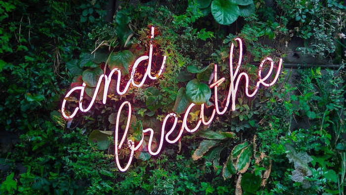 and breath neon sign, amongst greenery, girly wallpapers
