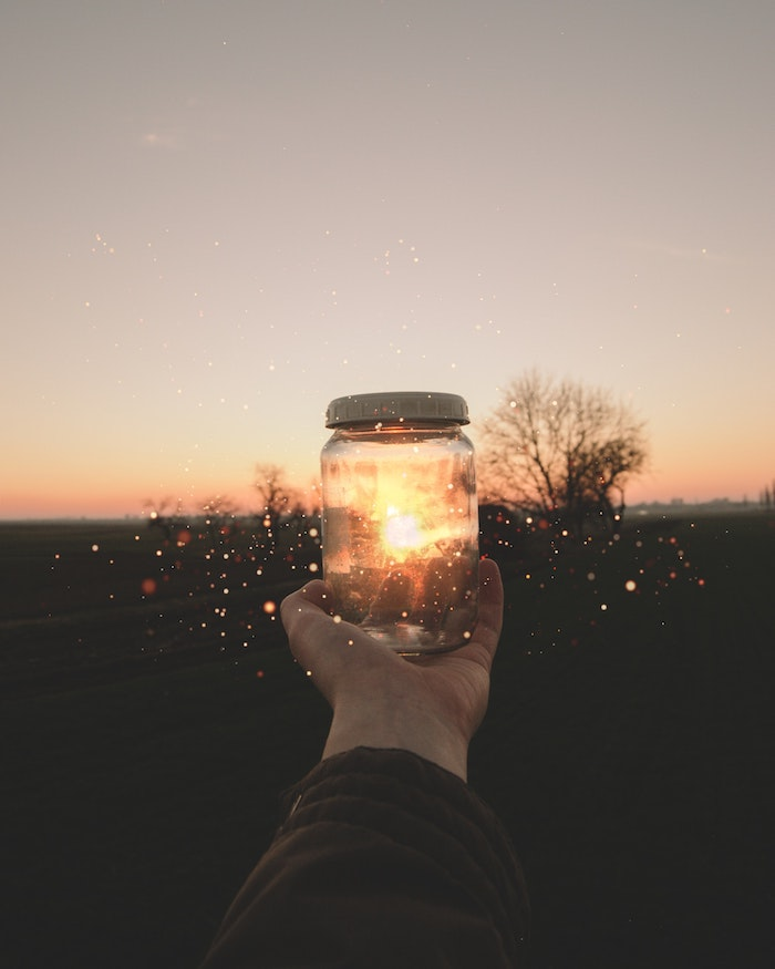 hand holding a jar, background tumblr, sun setting, black trees