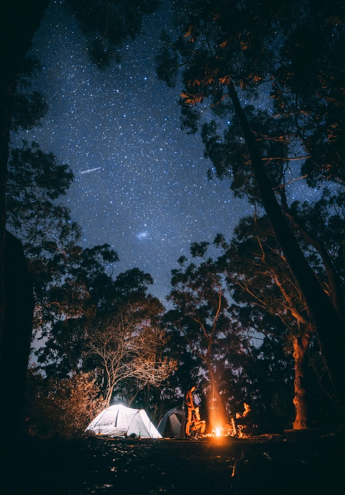 starry sky, camping in the woods, tall trees, flower background tumblr, set up tent