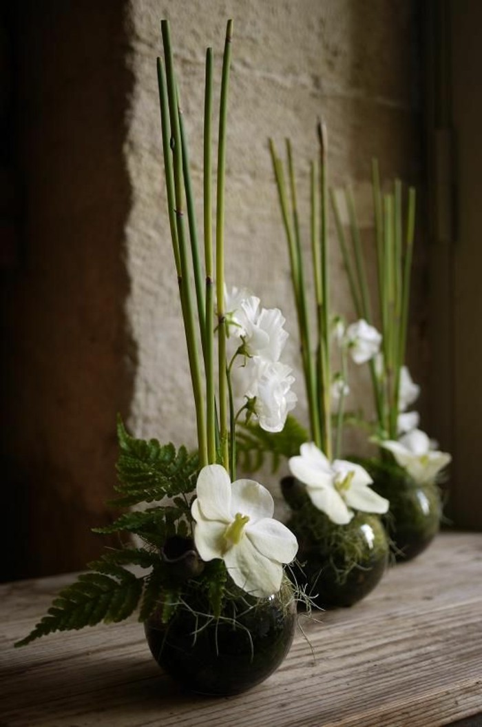 50 Images Magnifiques Pour La Meilleure Composition De Fleurs