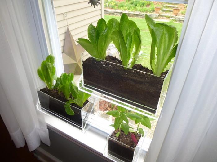 1001 Ides Jardinire Dintrieur Cultivez Votre