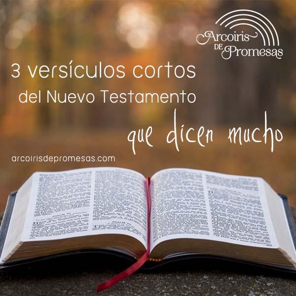 3 versiculos cortos del nuevo testamento curiosidades biblicas