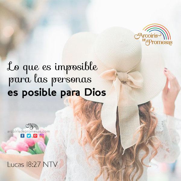 solucion para lo imposible promesas de dios para la mujer cristiana