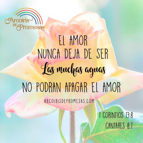 como es el amor segun la biblia enseñanza para mujeres cristianas