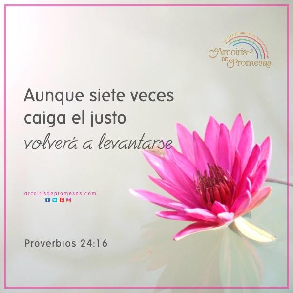 la mano de dios te levanta mensaje de aliento para la mujer cristiana