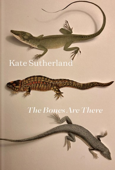 Kate Sutherland's The Bones are There