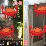 Crabs clip art in augmented reality