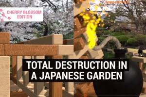 Oh My, I Ruined things in a Beautiful Japanese Garden