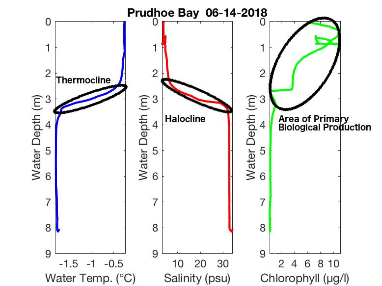sample-ctd-prudhoe
