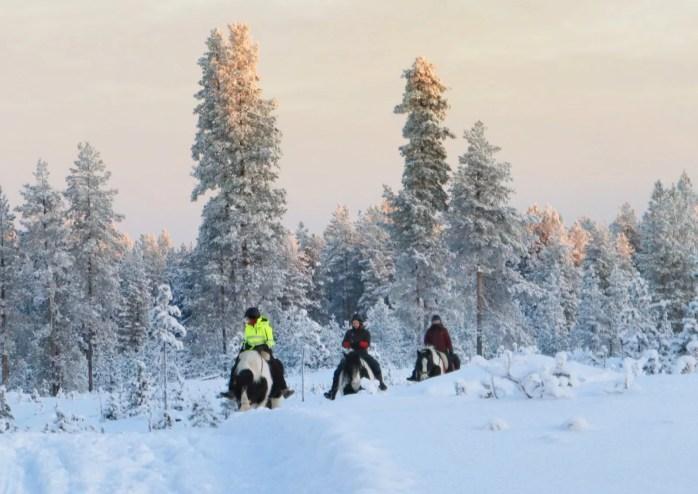 Excursion avec guide Français en Laponie