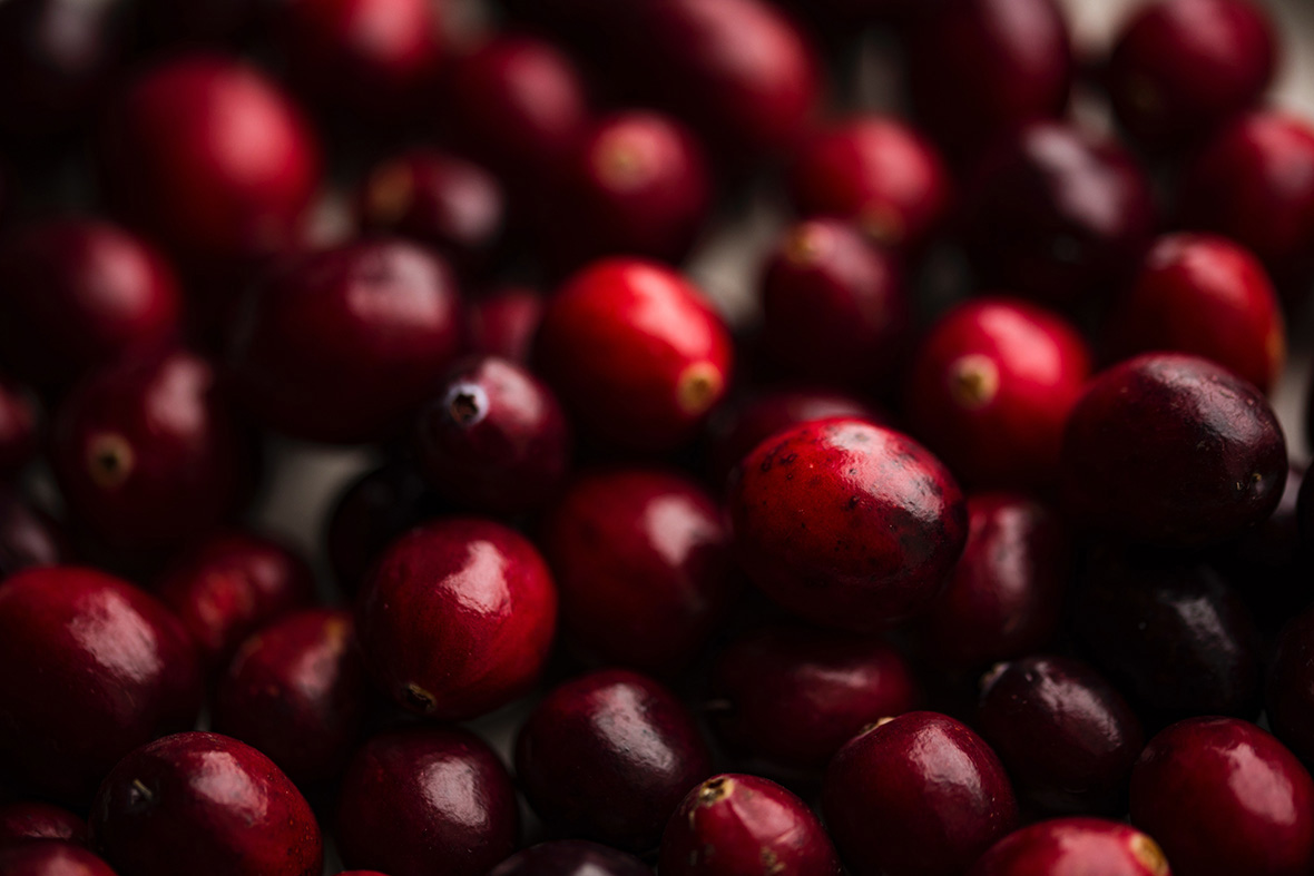 Is lingonberry the same as cranberry? In this blog we cover the main differences and similarities between lingonberry vs. cranberry.