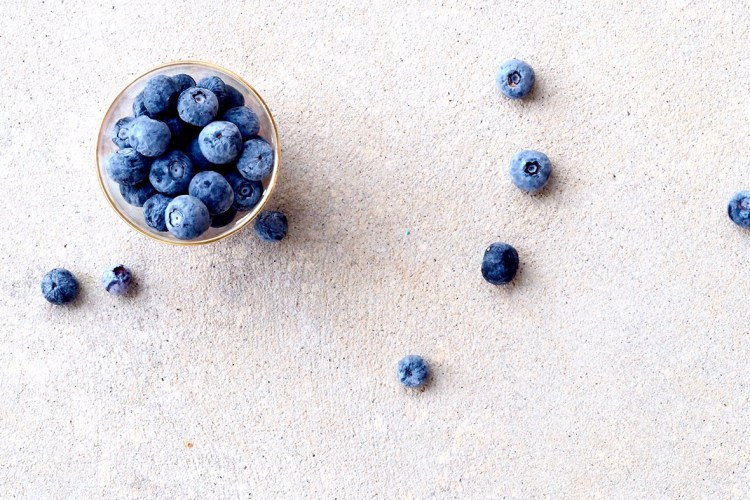 Blueberry Powder Benefits - All You Need to Know. Arctic Flavors wild blueberry powder has many health benefits. Read now about the exceptional blueberry powder benefits!