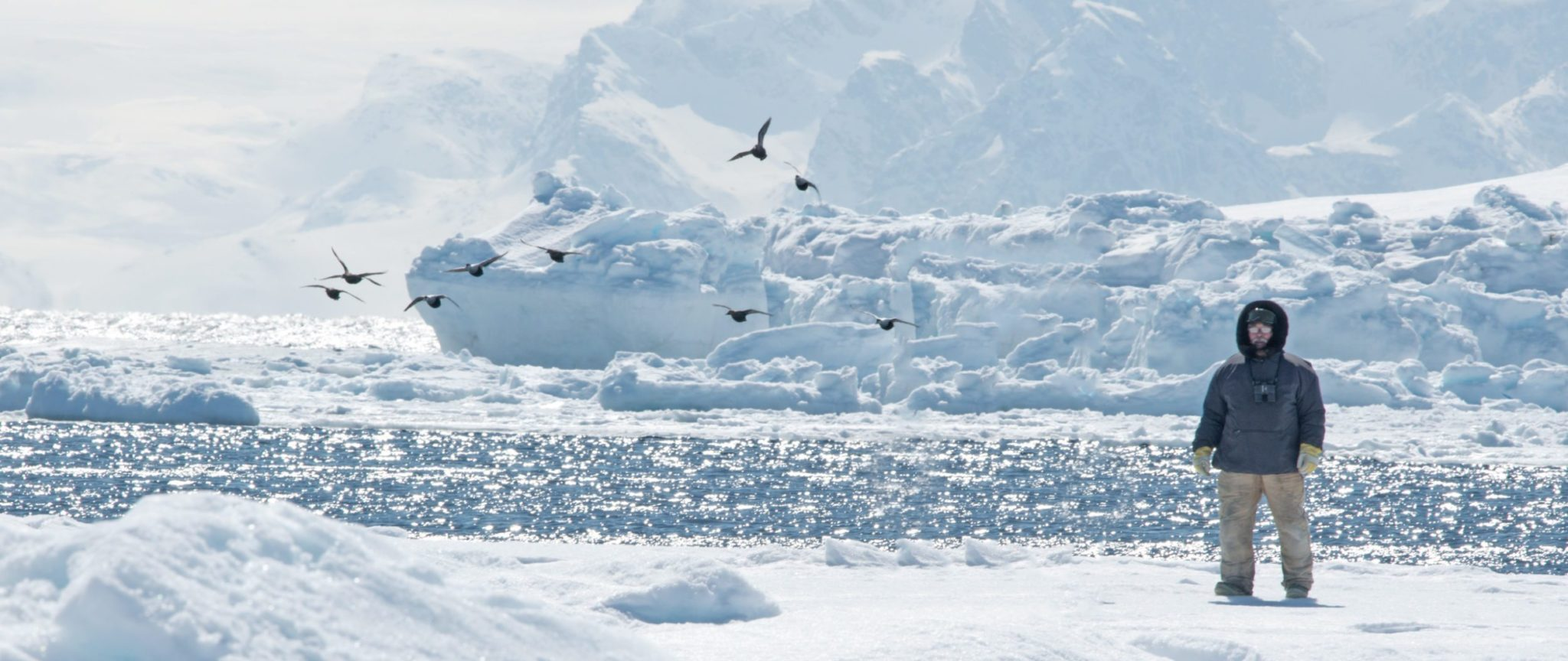 arctic adventure tours