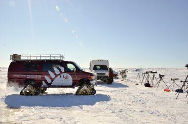Polar Bear Lodge_ by Michelle Valberg _D703650