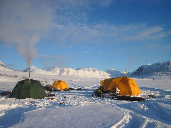Arctic Field Safety