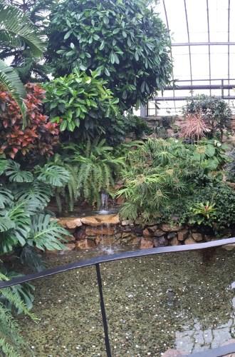 Explore Thunder Bay | Centennial Botanical Conservatory