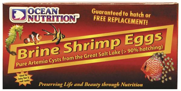 Brine Shrimp Eggs