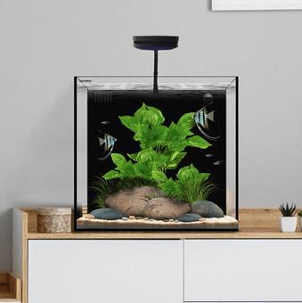 Waterbox cube 20 Aquarium