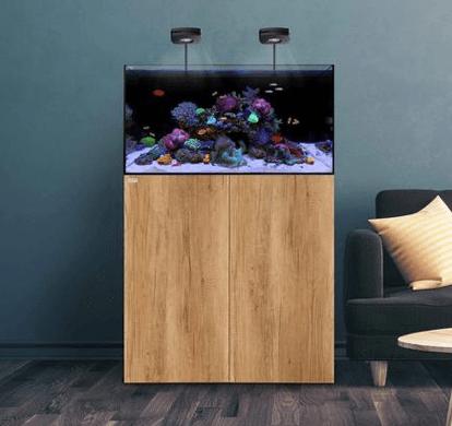 Waterbox All in one Aquarium