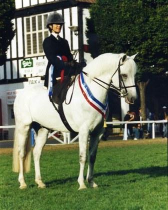 Side saddle Reserve Champ, Dublin, with Esme. Fotoshop.com
