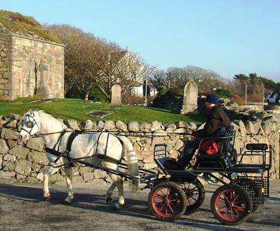 Macdara Mac Lochlainn drives Blue Smokey past the old graveyard