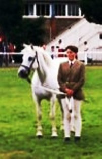 Knockdoe Walnut at RDS with Madeline in '92, was Reserve in class