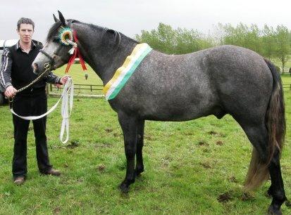 Cailin Conneely's Junior Champion