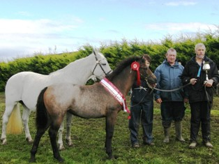 Pat &Mzary Rabbitt with Foal Champion, show Chairman Val Noone