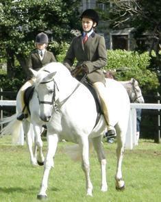 Callowfeenish Mary won Class D, rider under 16 for Serena Tuffy