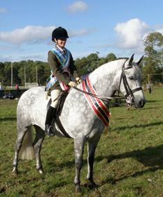 Supreme Performance Connemara Pony Oughterard 2009