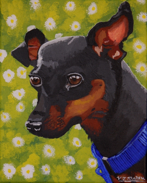 Minitonka, the mini pincer, painted pet portrait.