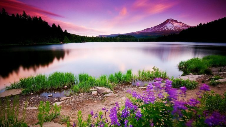 Colorful-Nature-HD-Pictures-768x432