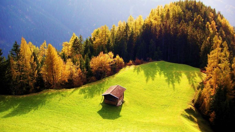 Cool-1080p-Nature-Wallpaper-768x432
