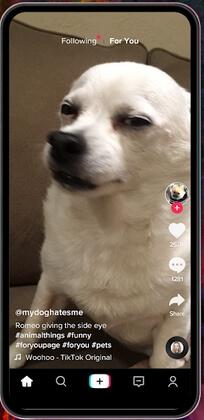tik tok unicorn app apk screenshot