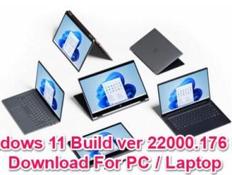windows 11 build 22000.176 iso
