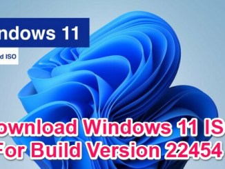 windows 11 iso for build 22454
