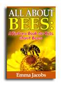 Bees book cover small