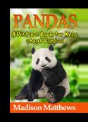 Pandas book cover small