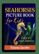 Seahorse book cover small