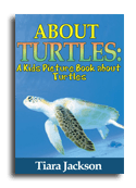 Turtles book cover small