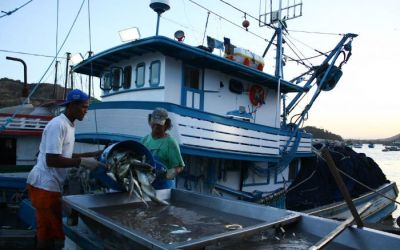 Como fica a moqueca capixaba com a privatização do terminal pesqueiro de Vitória?
