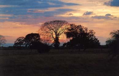 Parque Nacional Guanacaste