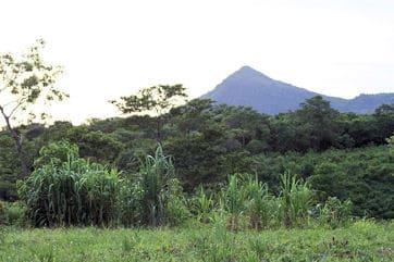 Cacao Volcano