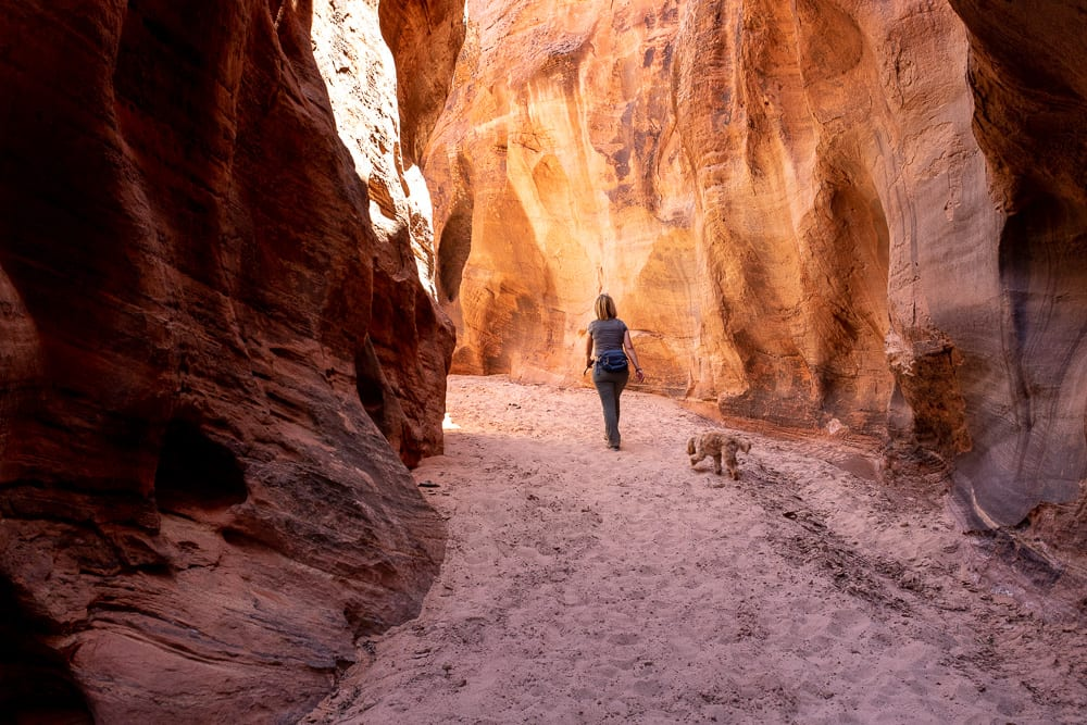 woman hiking out of slot canyon with cavapoo in Buckskin Gulch Kanab Utah