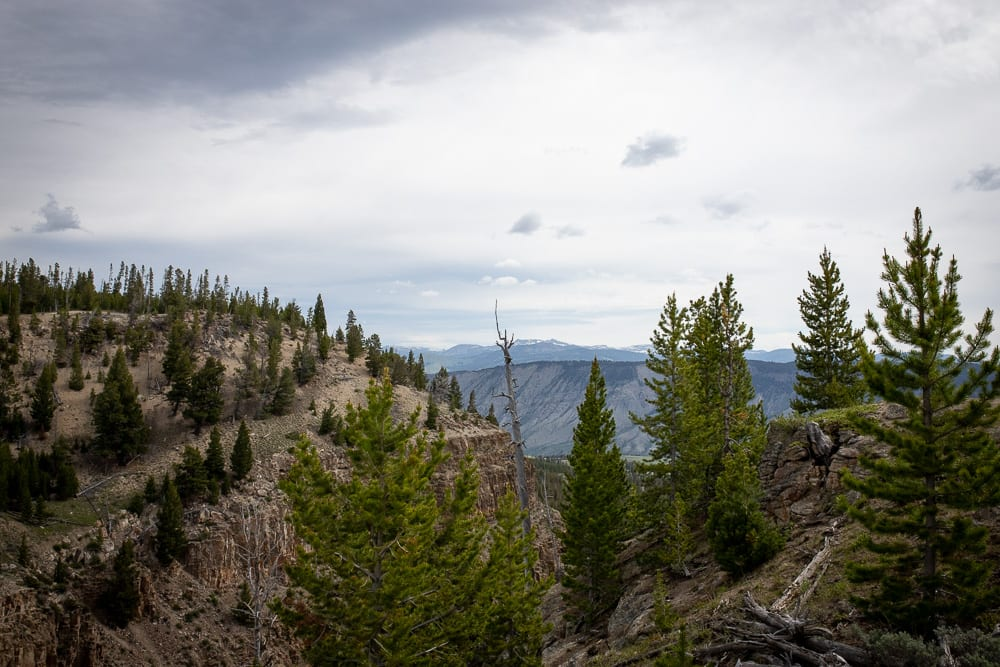 view of Yellowstone National Park from Bunsen Peak trail