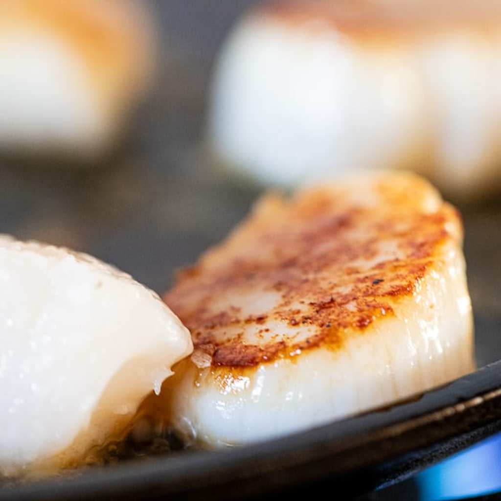 seared scallops in a cast iron griddle
