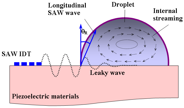 acoustic streaming in liquid fluid induced by SAW.